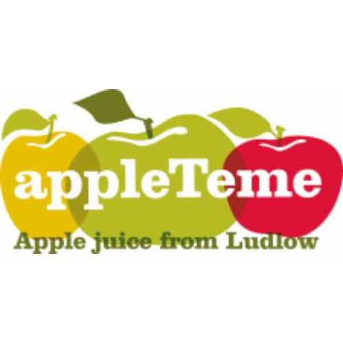 appleTeme logo