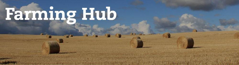 Buglife Farming Hub