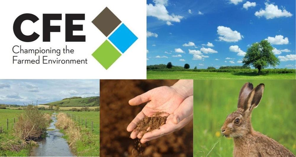 Championing the Farmed Environment
