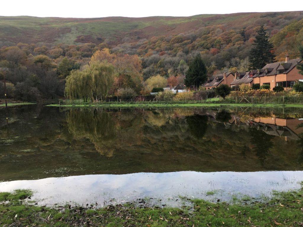 Cudwell Meadow