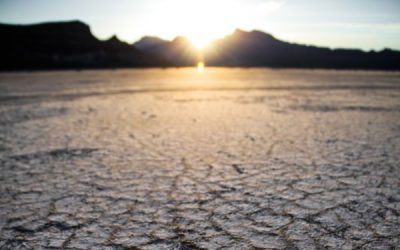 Climate Crisis Mitigation Strategy, Friday 15th November
