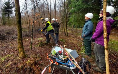 Woodland training a great success